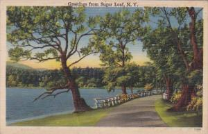 New York Greetings From Sugar Loaf 1945