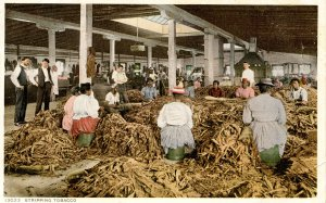 Stripping Tobacco