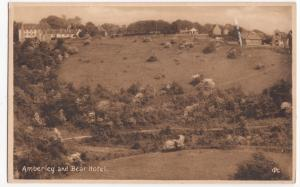 Gloucestershire; Amberley & Bear Hotel PPC, Unused, By Walter Collins, c 1920's