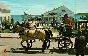 Michigan Mackinac Island Carriage Team On Main Street