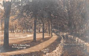 View in Back Park Clifton Springs NY 1909