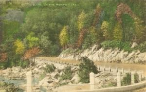 Scene on the Mohawk Trail, Mass 1941 used Postcard