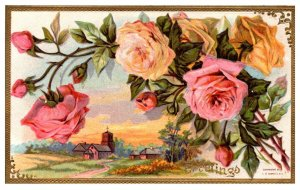 Greetings , pink and yellow roses , farm,   embossed
