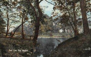 Vintage Staffordshire Postcard, Park Lime Pits, Walsall DM9