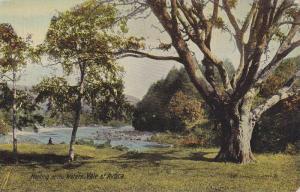 Meeting Of The Waters, Vale Of Avoca, Avoca, Co Wicklow, Ireland, 1900-1910s