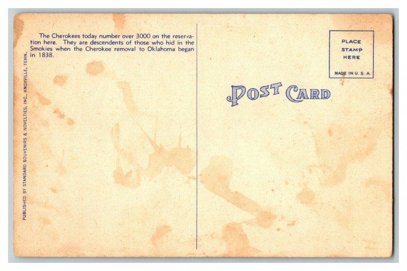 Cherokee Indians Cherokee Indian Reservation NC Vintage Standard View Postcard