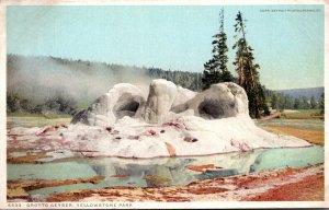 Yellowstone National Park Grotto Geyser Detroit Publishing