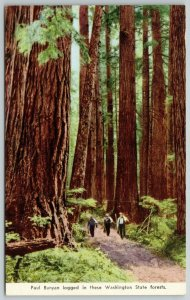 Olympia Washington~Trio of Lumberjacks Dwarfed by Trees in Paul Bunyan Forest~PC