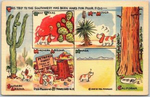 1948 REG MANNING Linen Postcard Southern Arizona / California  Travel Card #38