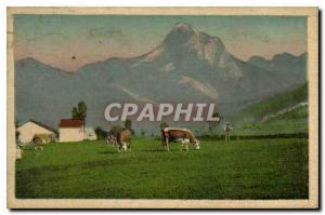 Old Postcard Thonon les Bains the Oche Cows tooth