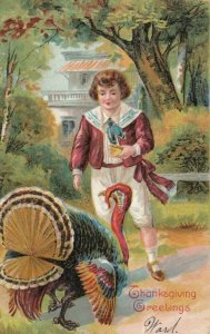 THANKSGIVING, PU-1909; Greetings, Boy playing with Wild Turkey