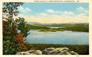NY - Adirondacks. Piseco Lake from Panther Mountain