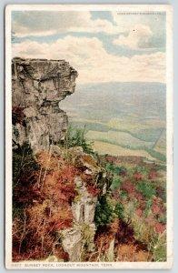 Chattanooga TN~Lookout Mountain~Sunset Rock~Detroit Publishing #11377 1910
