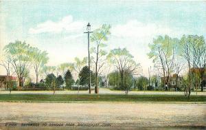 Bridgeport Connecticut~Seaside Park Entrance~Homes~Electric Street Light~1910