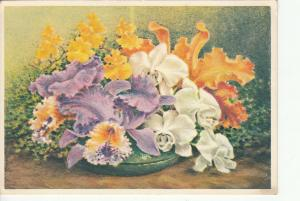 Flowers ornament still life postcard