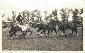 Hippique sport horses group horses competition RPPC 03.95