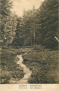 Slovakia Postcard Modra Harmonia Lili brucke forest area picture