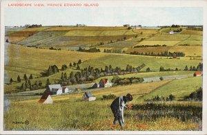 Landscape View Prince Edward Island PE Valentine Black Co Postcard G39