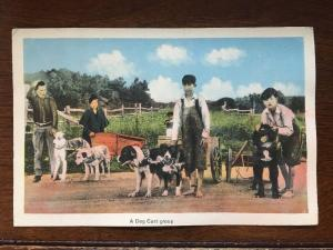 A Dog Cart Group, New Brunswick, Cananda Hand Colored D10