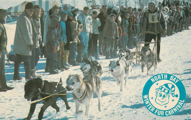 NORTH BAY , Ontario , Canada , 1950s-60s ; Sled Dog Race Winter Carnival