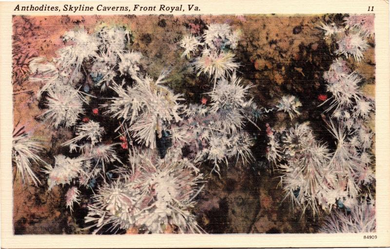 Anthodites, Skyline Caverns, Front Royal VA Vintage Linen Postcard G23