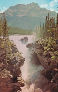 Canada Alberta Jasper Athabaska Falls