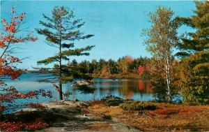 Silver Sands Trailer Park Huntsville Ontario Canada Postcard
