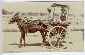Agra Chakrata India Horse Wagon RPPC Postcard