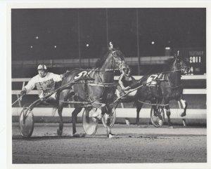 MEADOWLANDS Harness Horse Race , ARMBRO SONG winner, 1977
