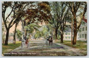Newport Maine~Elm Street Homes~Horse Buggies on Shady Road~c1910 Postcard