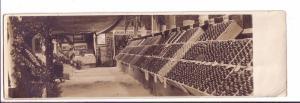 Real Photo Apple Show 1912 Summerland British Columbia, Okanagan X9.5 inch