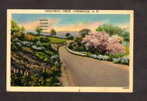 NY Greetings From Coxsackie New York Linen Postcard Roadside PC