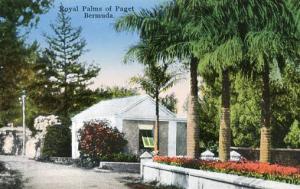 Bermuda - Royal Palms of Paget