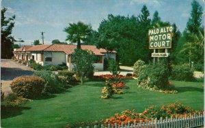 PALO ALTO, CA California    Palo Alto MOTOR COURT    c1940s   Roadside  Postcard