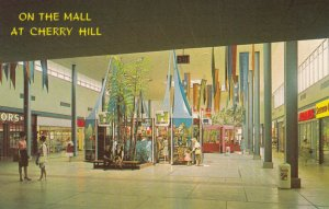 CHERRY HILL , New Jersey,  40-60s ; On the Mall #3
