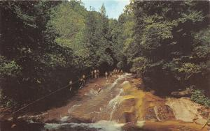 Pisgah National Forest North Carolina~Having Fun @ Sliding Rock~1960s Postcard