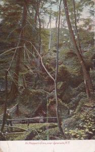 New York Syracuse Scene In Hoppe's Glen 1907