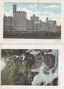 Hornimans Pure Tea 2x Old Advertising Postcard s