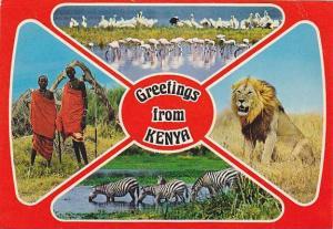 4-view postcard , Kenya, 50-70s