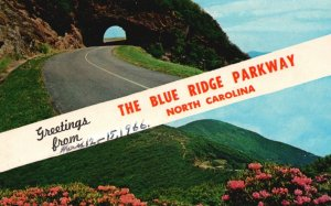Blue Ridge Parkway, NC, Tunnel, Craggy Gardens, 1966 Vintage Postcard g8938