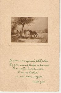 Horses at the shadow. Poem Old vintage French postcard