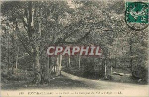 Old Postcard Fontainebleau La Foret The Crossroads of the Eagle's Nest
