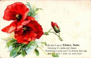 Nebraska Tilden Well Here I Am With Flowers 1909