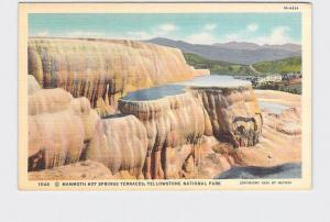 VINTAGE POSTCARD NATIONAL STATE PARK YELLOWSTONE MAMMOTH HOT SPRINGS TERRACES #3