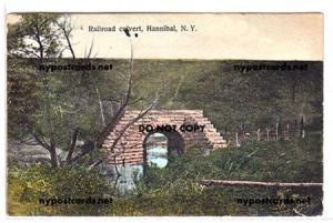 Railroad Culvert, Hannibal NY
