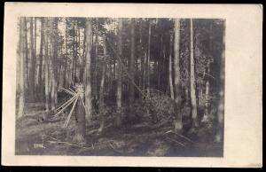 Artillery Damage in the Forest RPPC unused c1916