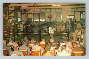 Lexington KY- Kentucky, Yearling Sales, Keeneland Race Course, Chrome Postcard