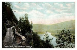 Early 1900s Hawks Nest Road near Port Jervis, NY Postcard *5N13