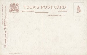 TUCK # 9196; PUNCH, Squire asking for some thatch for his head, 1900-10s