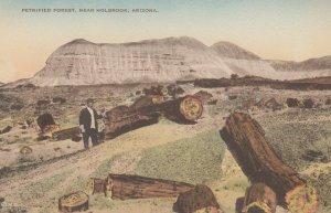 HOLBROOK , Arizona , 00-10s ; Petrified Forest